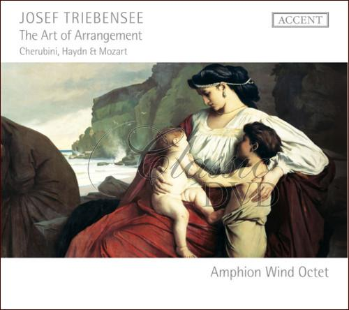 TRIEBENSEE,J.: The Art of Arrangement (CD)