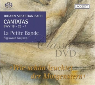 BACH,J.S.: Cantatas for the liturgical year, Vol.06 (SACD)